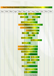 zone 4 vegetable planting calendar describing approximate dates to
