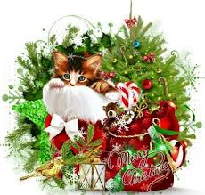 3392 best christmas cats images on pinterest christmas animals