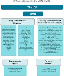 the international classification of functioning icf to evaluate