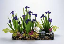 flower arrangement japanese culture arts ikebana flower arrangement