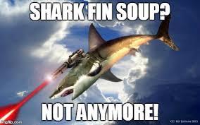 Laser Meme - flying laser shark imgflip