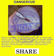 are onions for dogs false claim onions are magnets for bacteria hoax slayer