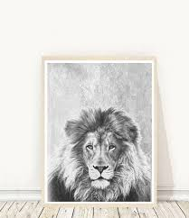 lion print lion print lion photo printable art black and white lion