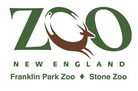 zoo lights stoneham coupons stone zoo special offers and coupons this winter boston on budget