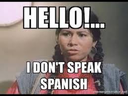 Speak Spanish Meme - list of synonyms and antonyms of the word no speak spanish