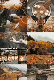 Does Hairspray Keep Pumpkins From Rotting by 97 Best A U T U M N Images On Pinterest Fall Halloween
