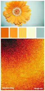 Contemporary Colors 28 Best Color Schemes Images On Pinterest Colors Color Palettes