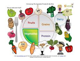 healthy plate coloring page 40 best myplate nutrition lesson ideas images on pinterest