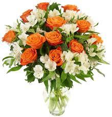 amazon com benchmark bouquets white elegance with vase