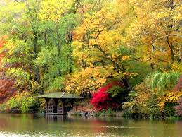 25 trending fall scenery pictures ideas on pinterest canada