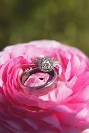 fields wedding rings host your gala or wedding at the flower fields the flower fields