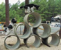 Dog Backyard Playground by Backyard Dog Playground Doggie Yards Pinterest Dog
