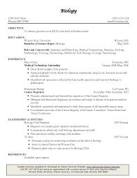 Plain Resume Template Program Director Description For Resume Sample Law Student Resume