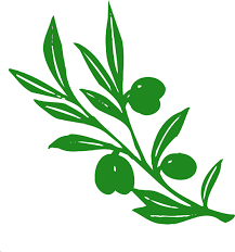 olive tree branch clip free vector 4vector
