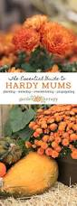 keep your fall flowers blooming all season with this essential