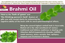 Essential Oils For Hair Loss Uses Of Brahmi Oil Ayurvedic Oils