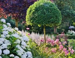 Shrub Garden Ideas Planting Combination Ideas