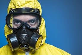 mold remediation and removal connect with mold experts