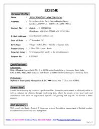 Example Of A Profile In A Resume Example Of Profile In Resume Curriculum Vitae Resume Template For