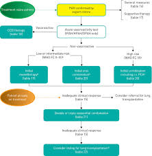 2015 esc ers guidelines for the diagnosis and treatment of