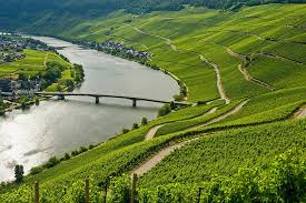 moselle moselle the moselle valley holidays in one of germany s most beautiful