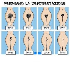 male pubic hair trends click for a larger view wallpapers posters pinterest