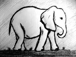 best 25 simple elephant drawing ideas on pinterest easy