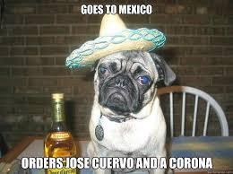 Jose Cuervo Meme - goes to mexico orders jose cuervo and a corona vacation dog