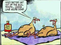 image gallery evil turkey