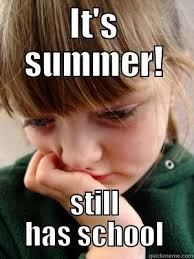 Summer School Meme - homeschool meme the one pro for college there is actually a