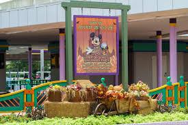photos a look at this year u0027s magic kingdom halloween decor