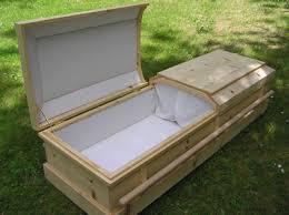 pine coffin p1010113t jpg