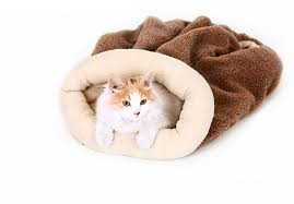Self Warming Pet Bed Hoopet Pet Bed Self Warming Soft Sleeping Bag Cuddly Cave Pet Cat