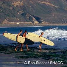 d oration surf chambre 24 best shacc photo archive images on photo archive