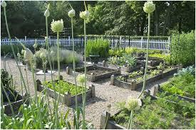 backyards winsome beautiful backyard garden backyard ideas