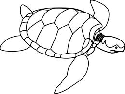 sea turtle clipart free download clip art free clip art on
