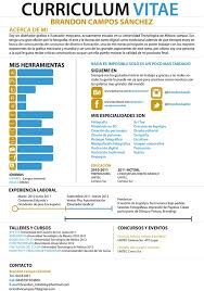 Infographic Resume Samples by 34 Best Infographics Cv Images On Pinterest Infographic Resume