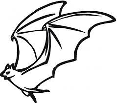 flying bat coloring u0026 coloring book