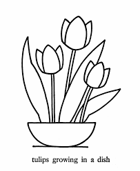 coloring pages may flowers mothers day flowers color meaning