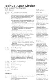 Account Manager Resume Sample by Country Manager Resume Samples Visualcv Resume Samples Database