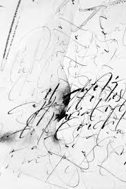 bichon frise z hter hessen 2001 best calligraphy and lettering images on pinterest