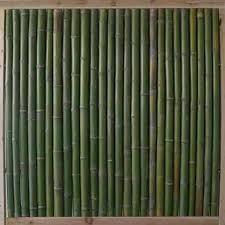 bambus fã r den balkon the 65 best images about balkon und garten on gardens