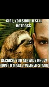 Sloth Jokes Meme - the sloth bahahaha pinterest sloth sloth memes and memes