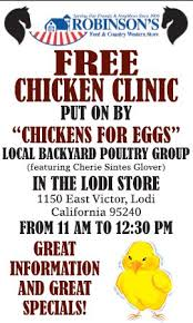 Backyard Poultry For Sale by Chickens For Eggs Chicken Consulting For The Urban Backyard