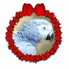 83 best christmas parrots images on pinterest parrots parrot