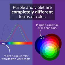 different colors of purple violet and purple aren t the same thing
