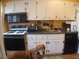 painting ideas amazing affordable kitchen cabinets