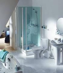 Installing A Basement Toilet by 100 Basement Toilet Installation Check Center Of Closet