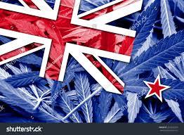 Colorado Flag Marijuana New Zealand Flag On Cannabis Background Stock Illustration