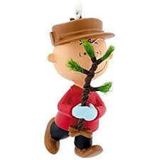 amazon com what christmas is all about the peanuts gang 2013